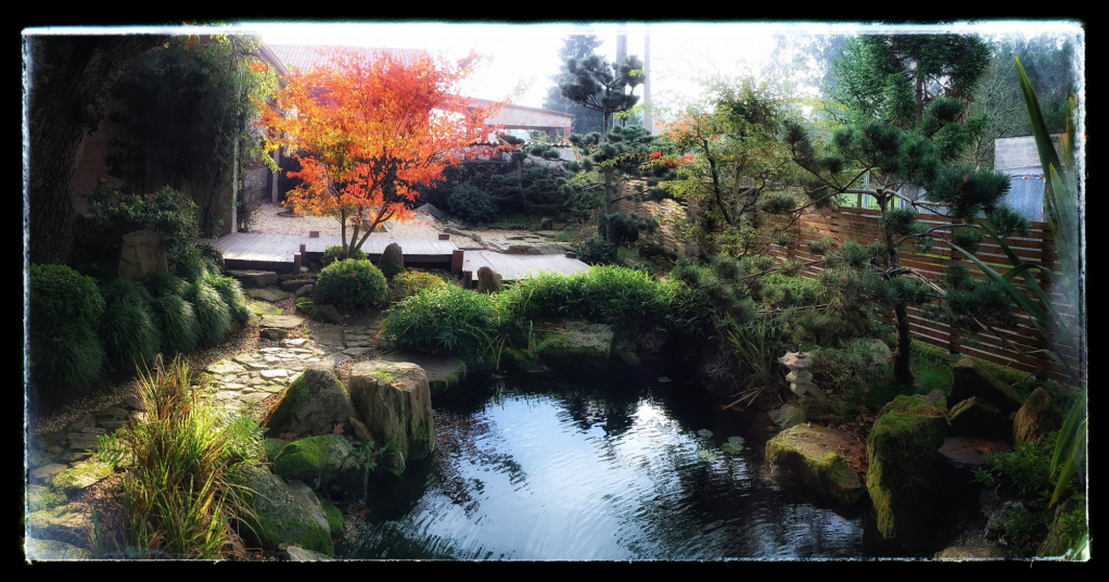 myjapanesegarden_autumn2015_Fotor_Fotor