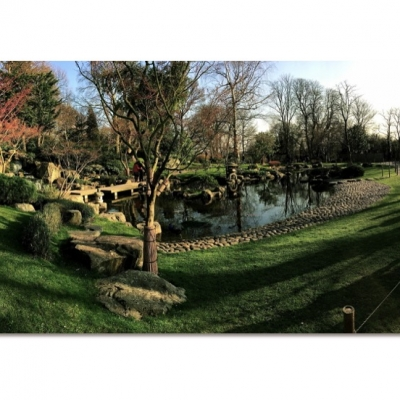 Panoramic overview Pond