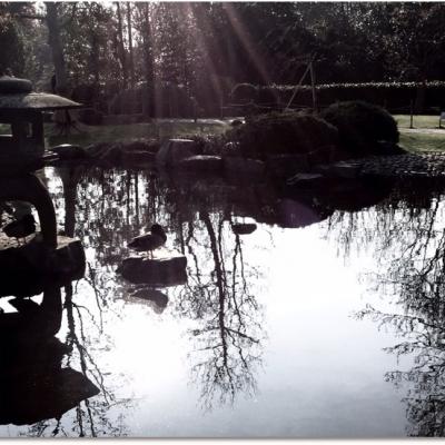 Yukimi-dōrō reflection