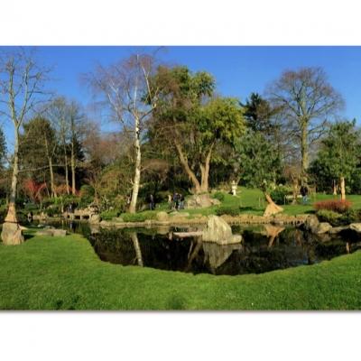 Crane Island & Pond