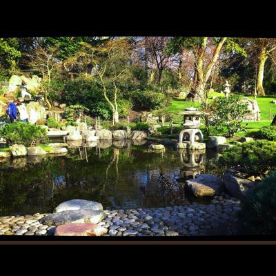 Pond & Yukimi-dōrō Lantern